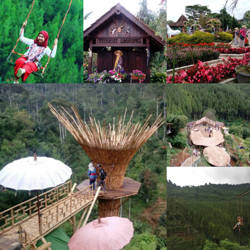 1-Day Trip to The Lodge – Taman Bunga Begonia – TahuSusu – FO With Transfers & Tour Guide for Rp250.000 / Person