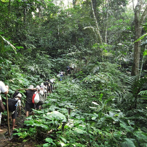 2Days 1Night Explore Baduy with Transfers & Tour Guide for Rp250.000 / Person